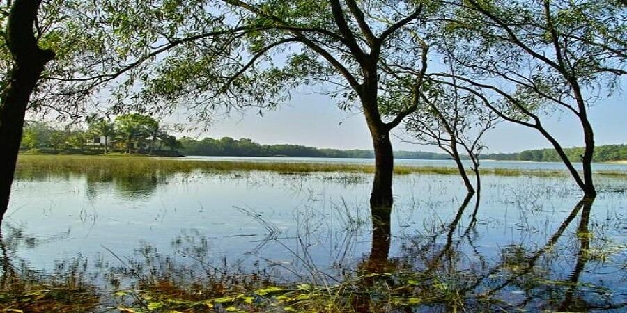 Hồ Bàu Tró